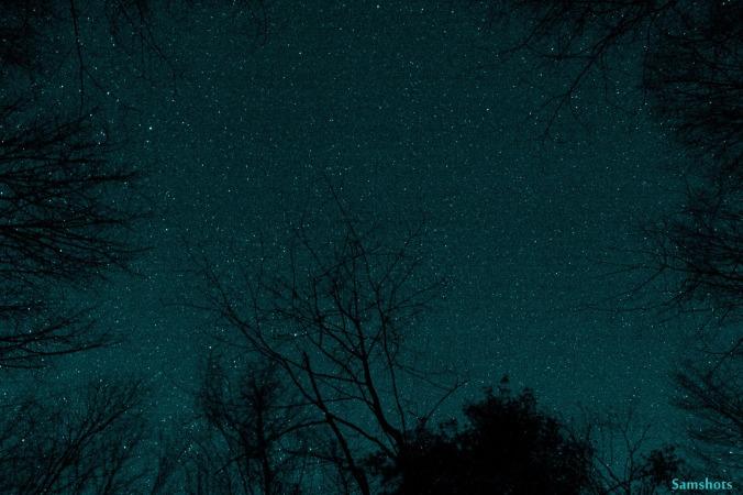Lenten Longings stars
